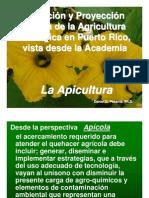 Apicultura - La Apicultura en Pto Rico