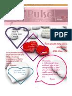 Feb Pulse Final