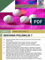 POLISIKLIS