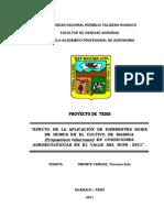 proyecto omonte.docx