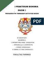Enzim 1
