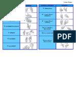 PRENSIONES.pdf