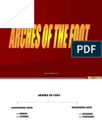 Arches Foot