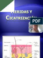 patologiaheridasycicatrizacion-100726112702-phpapp01