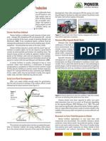 2011_Starter_Fertilizer_Canada_HQ.pdf
