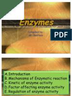 55064771-biokim-enzim