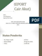 Case Report Diare Akut