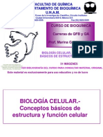 Biol Cel Basica Iq, No en Temario