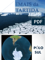 Animais da Antartida / Pólo Sul