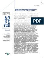 Circular técnica embrapa - agrobacterium 2008