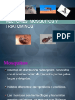 VECTORES - MOSQUITOS Y TRIATOMINOS