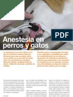 Av18_12-15 Anestesia en Perros y Gatos