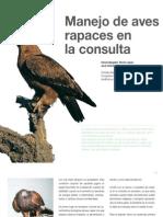 Av18_24-28 Manejo de Aves Rapaces en La Consulta