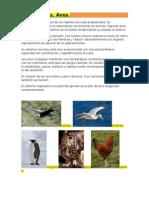Aves.Resumen