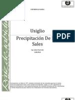 Usiglio, Precipitacion de Las Sales