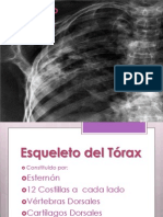 Esqueleto del Tórax.pptx