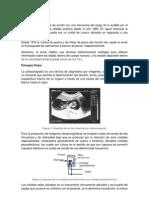 ultrasonografía.docx
