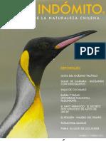 CHILE INDOMITO - La Revista de Naturaleza de Chile