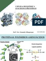 AMINOÁCIDOS E PROTEÍNAS_Fernanda