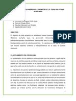 PRODUCCIÓN DE POLIHIDROXIALCANOATOS DE LA  CEPA RALSTONIA EUTROPHA