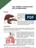 _Órganos_y_emociones.pdf
