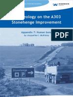 Human bone - Archaeology on the A303 Stonehenge Improvement