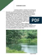 humedales biogeografia.doc