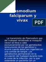 tratar de expo micro plasmodium