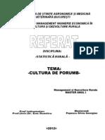Statistici Rurale-Piata Porumbului