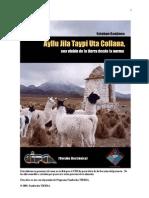 Ayllu Jila Taypi Uta Collana Sistemas - Esteban Sanjines