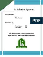MIS in Salaries System