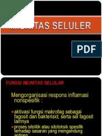 4 IMUNITAS SELULER.ppt