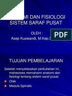 112914427 Anatomi Dan Fisiologi Sistem Saraf Pusat