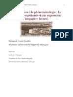 [Revue du Cercle niçois de phénoménologie] L. Tengelyi, Introduction à la phénoménologie
