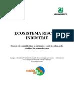 Legambiente - ECOSISTEMA RISCHIO  INDUSTRIE