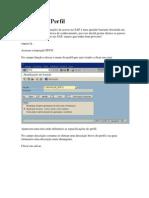 Criar Perfil No SAP