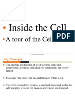 Cell Structure C&M C-7