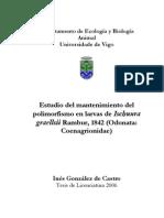 e Ischnura graellsii Rambur, 1842 (Odonata Coenagrionidae)-In�s Gonz�lez de Castro-Tesis de Licenciatura 2006.pdf