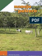 El Manejo Del Potrero, NITLAPAN