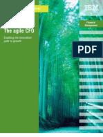 The Agile Cfo