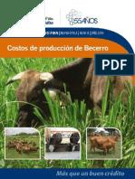 008 - Costos_de_Producción_de_Becerro.pdf                                                                                                             -2.htm