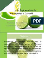 Proyecto de Exportación de limón persa a Canadá