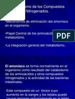 Clase Amoniaco