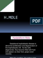 H-mole (case study)
