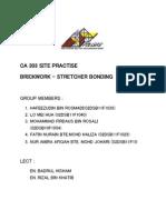 CA 303 Site Practise