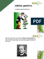 DNA2life_Mendelism