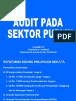 Audit Pada Sektor Publik