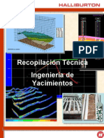 Manual de Yacimientos HALIBURTON