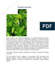Andrographis Paniculata.docx