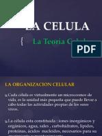 6. La Celula Ppp